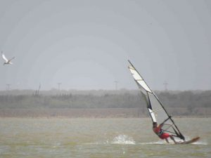 Speed-Mayapo-Windsurf