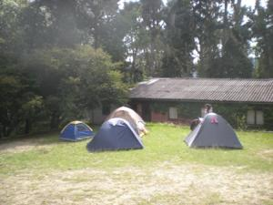 Camping-Tomine